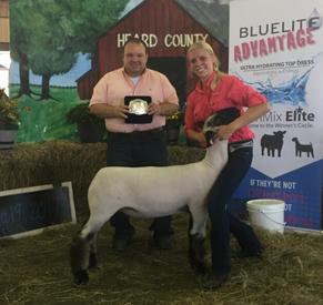 Cox Club Lambs & Livestock - Champions